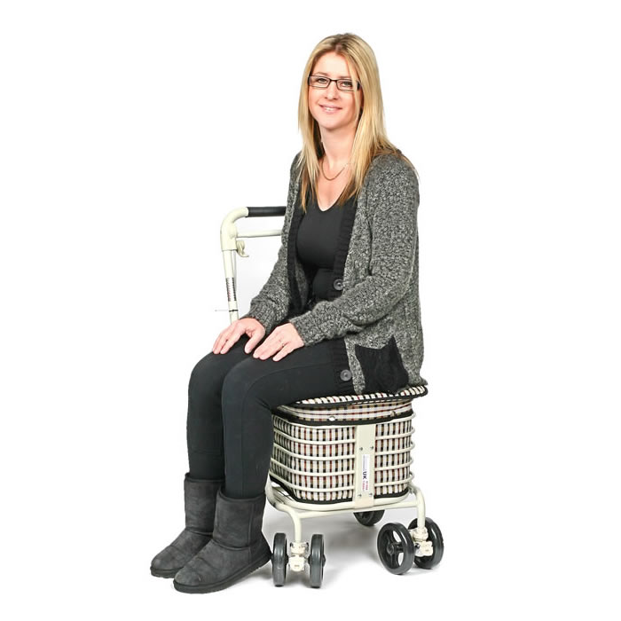 The Backrest Seat Shopper - Light Tartan